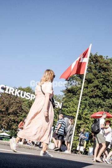 Folkemødegæster under flaget